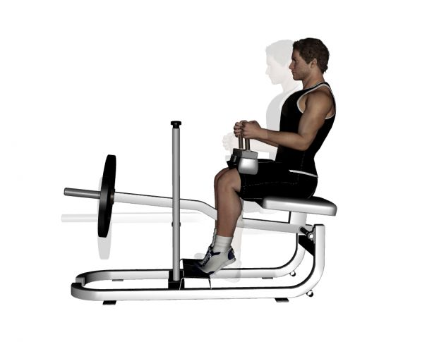exercice-musculation-jambes-6